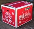 みかん箱10キロ