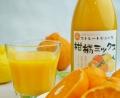 愛媛吉田みかん【柑橘ミックス】!ストレートみかんジュース720ml 1本 ファミリー仕様