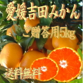 【送料無料】【贈答用】南愛媛吉田産・温州みかん厳選・5kg