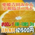 【愛媛吉田みかん】宇和島ゴールド(河内晩柑・愛南ゴールド・美生柑)3kg(8〜10個位)お試しにも・送料無料