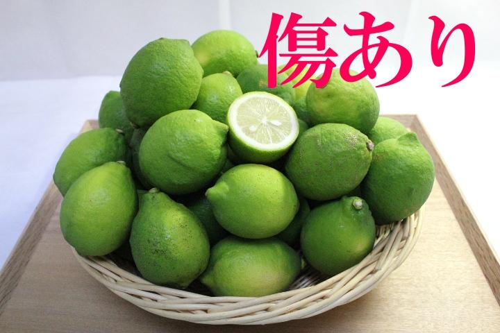 国産グリーンレモン 傷あり・傷なし込(3kg)
