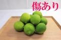 国産グリーンレモン(1kg)A品・B品込み