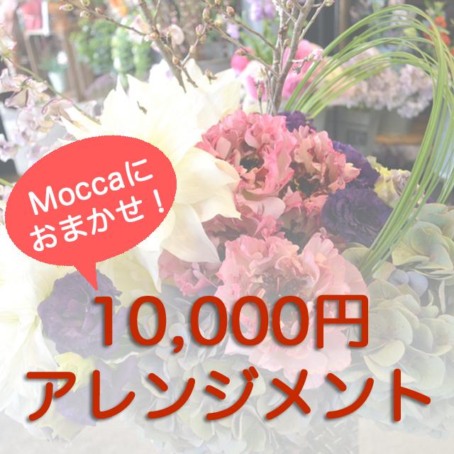 モッカにおまかせアレンジメント10000円