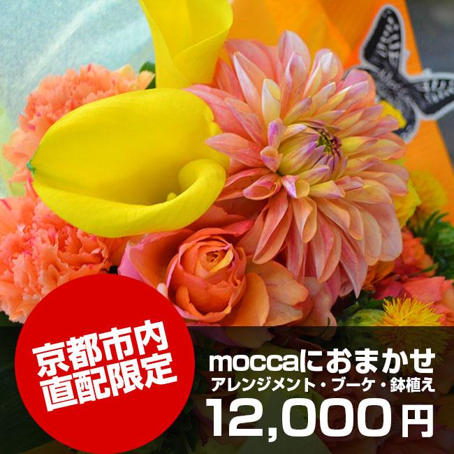 京都市内直配限定moccaにおまかせ12,000円