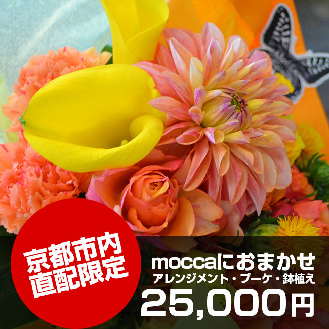 【送料無料】京都市内直配限定moccaにおまかせ25,000円