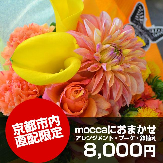 京都市内直配限定moccaにおまかせ8,000円
