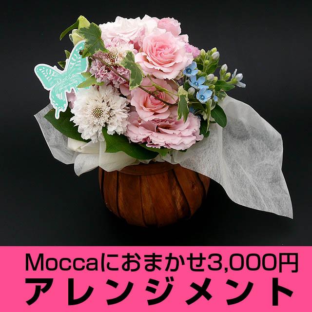 Moccaにおまかせアレンジメント3000円