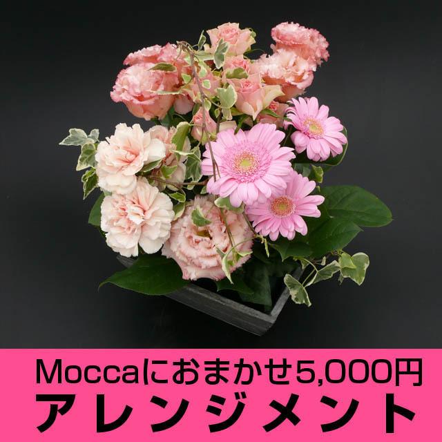 Moccaにおまかせアレンジメント5000円