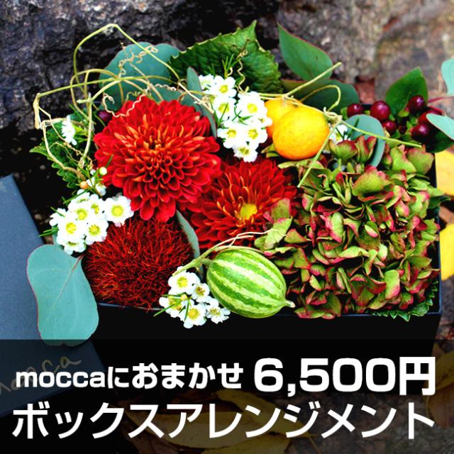 送料無料!Moccaにおまかせ ボックスアレンジメント6500円