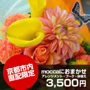 京都市内直配限定moccaにおまかせ3,500円