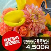 京都市内直配限定moccaにおまかせ4,500円