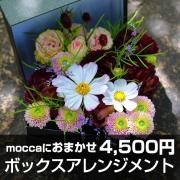 送料無料!Moccaにおまかせ ボックスアレンジメント4500円