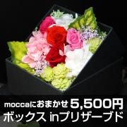送料無料!Moccaにおまかせ ボックス in プリザーブドフラワー5500円