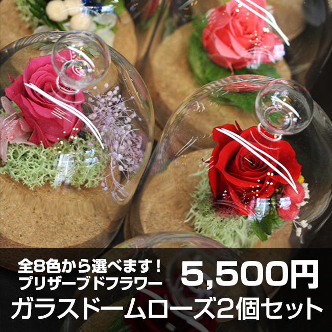 送料無料!選べるカラー全8色 ガラスドームローズ同色2個セット5500円