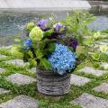 【父の日ギフト】 紫陽花のアレンジメント5000円