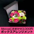 Moccaにおまかせボックスアレンジメント3000円