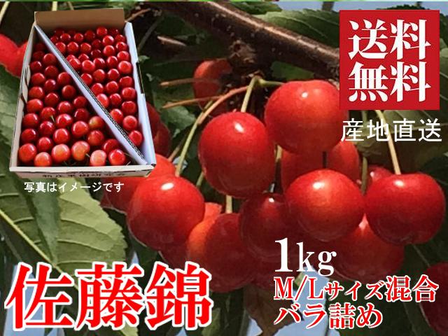山形さくらんぼ 佐藤錦 M/Lサイズ混合 1kg バラ箱詰め 新庄産 露地栽培 送料無料