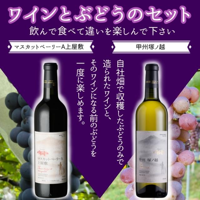 自社畑産ワインとぶどうのセット
