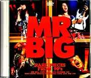Mr. Big ミスター・ビッグ/Tokyo,Japan 1991 & more