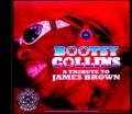 Bootsy Collins ブーツィ・コリンズ/MN,USA 2008