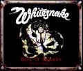 Whitesnake ホワイトスネイク/England,UK 1980 Upgrade & more