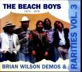 Beach Boys ビーチ・ボーイズ/Rarities 1972-1976