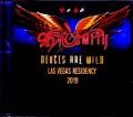 Aerosmith エアロスミス/NV,USA 2019 IEM Matrix Ver.
