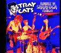 Stray Cats ストレイ・キャッツ/NY,USA 1983