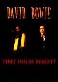 David Bowie デヴィッド・ボウイ/NY,USA 2002 & more