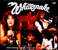 Whitesnake ホワイトスネイク/Saitama,Japan 1984 2 Days Upgrade