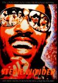 Stevie Wonder スティーヴィー・ワンダー/Video Chronicles 1964-1985