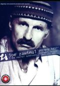Joe Zawinul,Richard Bona ジョー・ザビヌル/Germany 1997