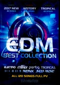 Various Artists Ariana Grande,Maroon 5,Demi Lovato/EDM Best Collection