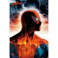 スパイダーマン ポスター : 112