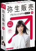 弥生販売  19 プロフェッショナル 2ユーザー (ユーザー登録済み製品)