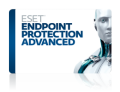 ESET Endpoint Protection Advanced 企業向ライセンス 6-24ユーザー 年間更新費(代引不可)
