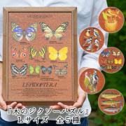 小高辰也 ドムスペースデザイン 木製 パズル