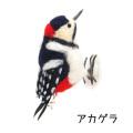 寺本典子 フェルトの小鳥