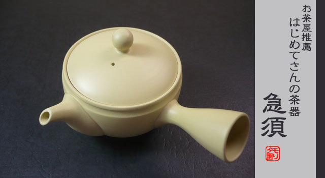 常滑焼 急須 おしゃれな急須 日本茶