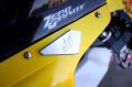 ミラーエリミネーター Triumph 675 2006-2012用