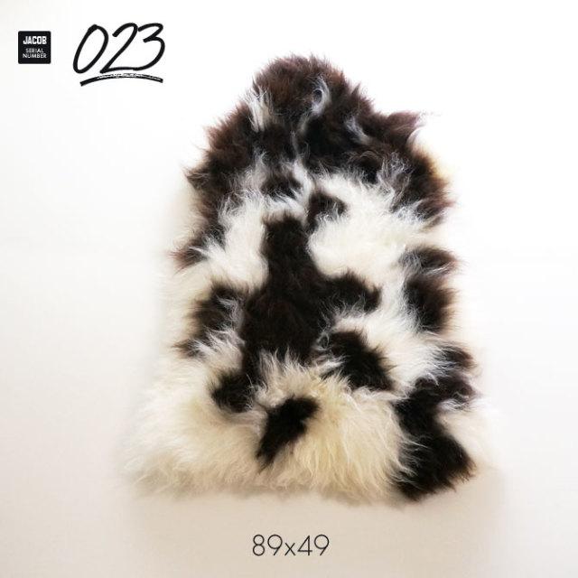 jacob023
