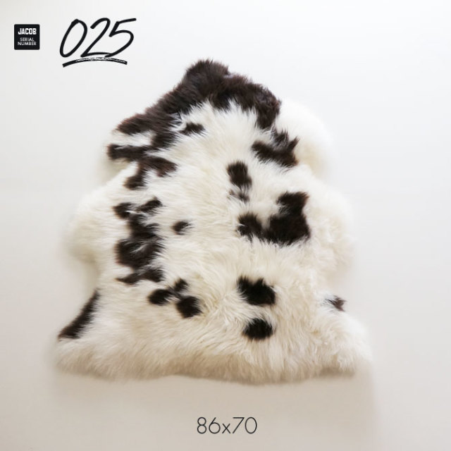 jacob025