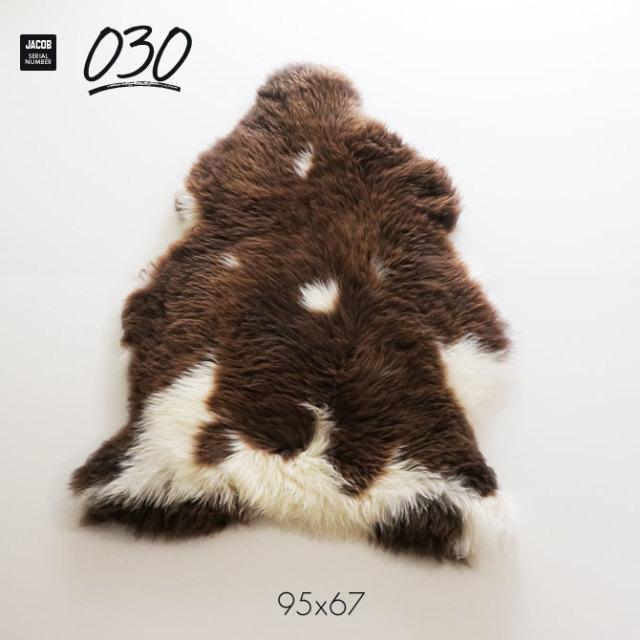 jacob030
