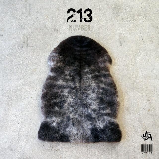 spotty213