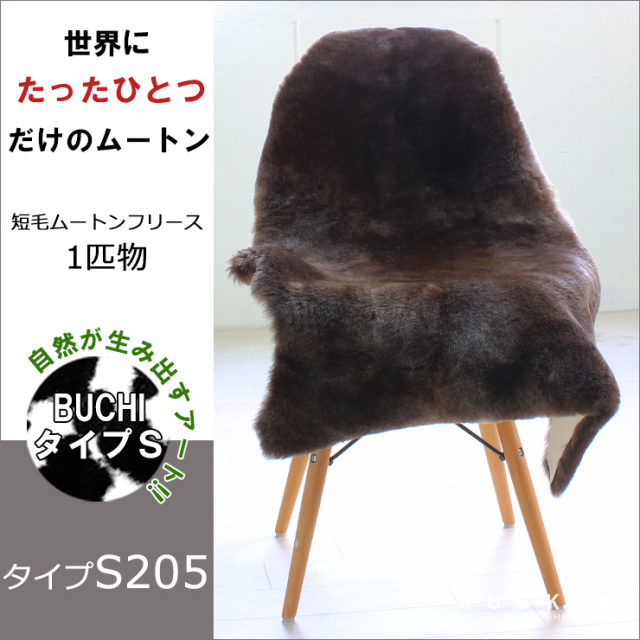 BUCHI-S205