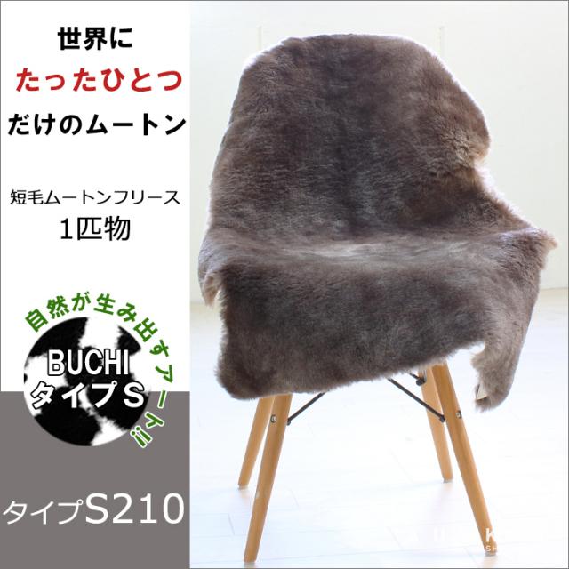 BUCHI-S210