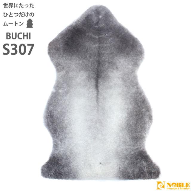 buchi-s307