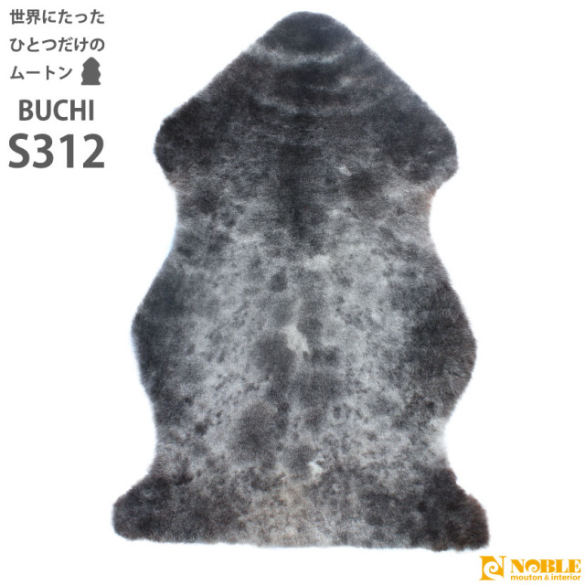 buchi-s312