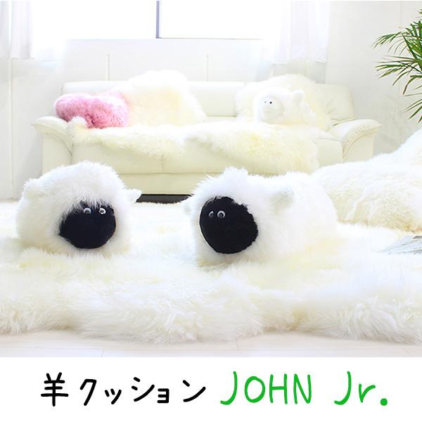 JOHN Jr