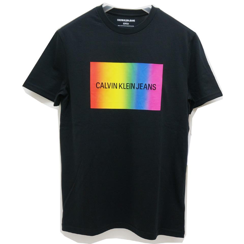 CALVIN KLEIN カルバンクライン Tシャツ RAINBOW BOX LOGO S/S Tee
